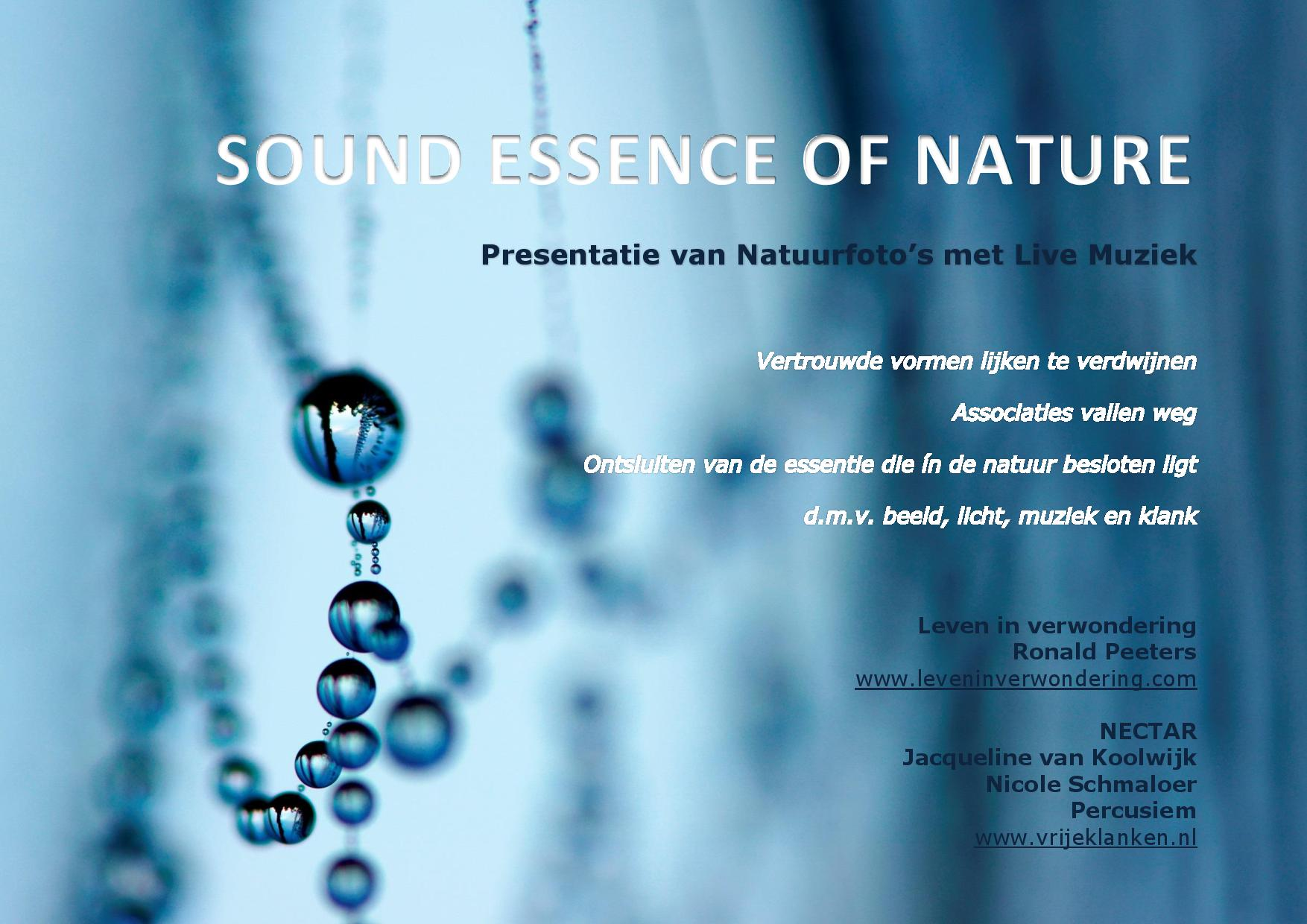 SOUND ESSENCE OF NATURE concept flyer-page-001.jpg